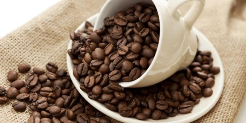 What is Premium Gourmet Coffee